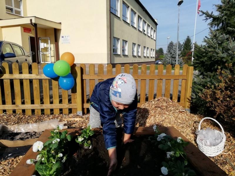Ogródek_12