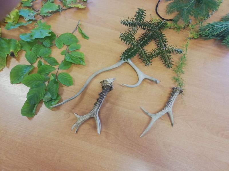 Spotkanie z leśniczym 1